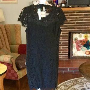Fate lace black dress